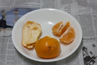 Orange or tangerine?